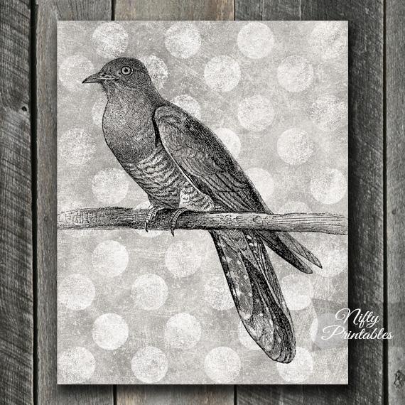 Cuckoo Bird Print - Vintage Polka Dots