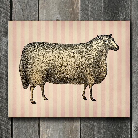 Sheep Print - Vintage Nursery Art
