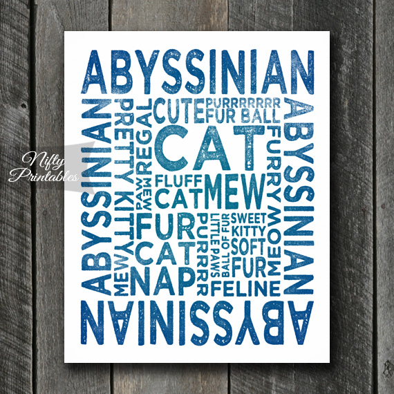 Abyssinian Art Print - Cat Typography