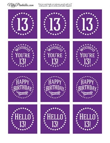 13th Birthday Cupcake Toppers - Purple