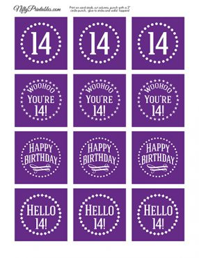 14th Birthday Cupcake Toppers - Purple