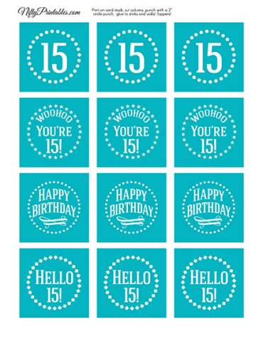 15th Birthday Cupcake Toppers - Turquoise