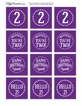2nd Birthday Cupcake Toppers - Purple