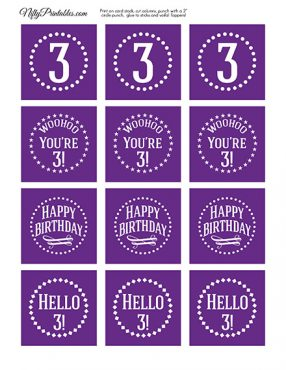3rd Birthday Cupcake Toppers - Purple