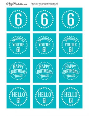 6th Birthday Cupcake Toppers - Turquoise