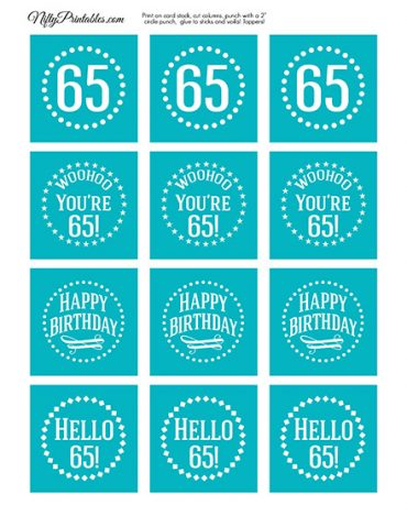 65th Birthday Cupcake Toppers - Turquoise