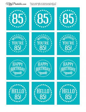 85th Birthday Cupcake Toppers - Turquoise