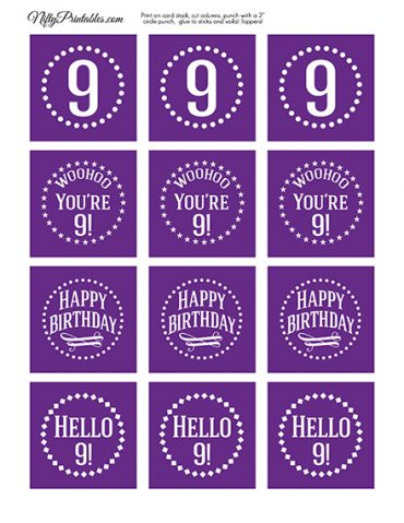 9th Birthday Cupcake Toppers - Purple