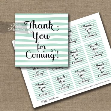 Thank You For Coming Tags - Mint Drawn Stripes