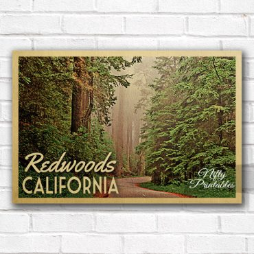 Redwoods Vintage Travel Poster