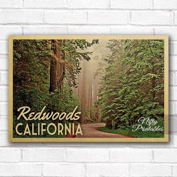 Redwoods Vintage Travel Poster