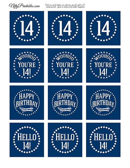 14th Birthday Toppers - Navy Blue Cupcake Toppers