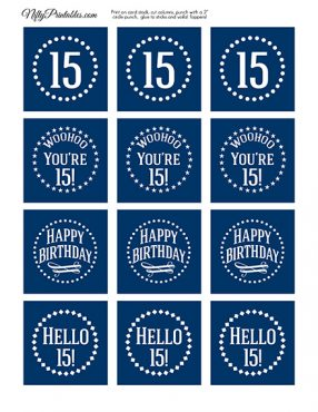 15th Birthday Toppers - Navy Blue Cupcake Toppers