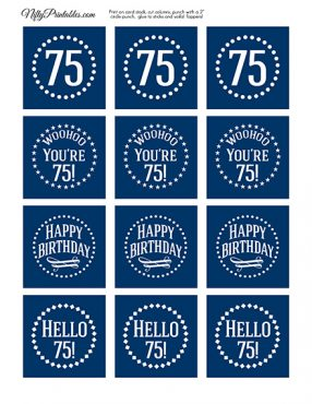 75th Birthday Toppers - Navy Blue Cupcake Toppers