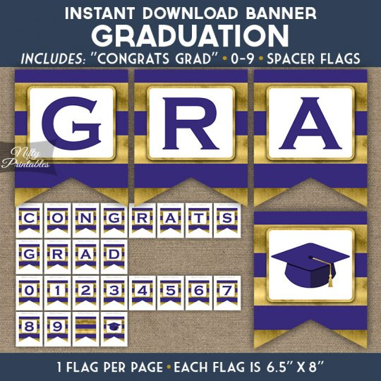Graduation Banner - Purple Gold Horizontal Stripes