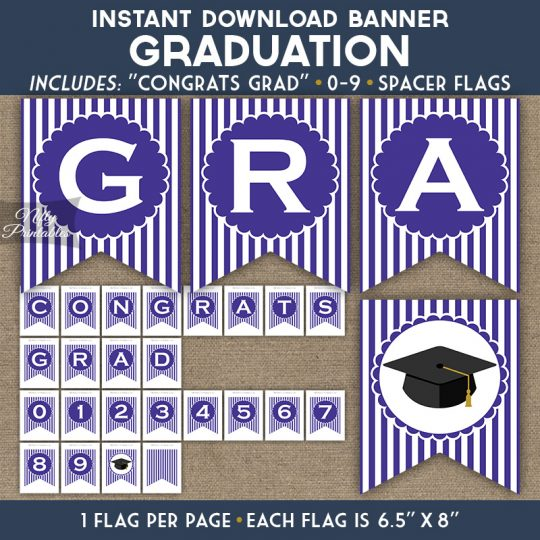 Graduation Banner - Purple White Stripe