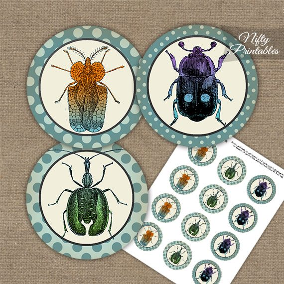 Vintage Beetles Cupcake Toppers