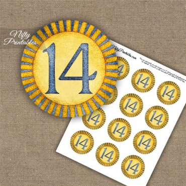 14th Birthday Anniversary Cupcake Toppers - Sunshine Illustrated