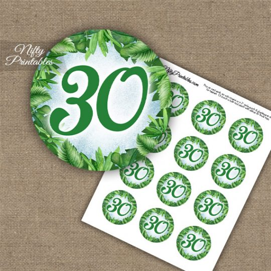 30th Birthday Anniversary Cupcake Toppers - Greenery