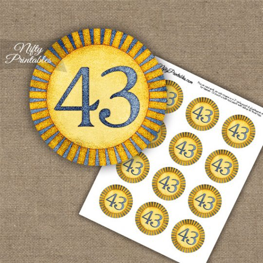43rd Birthday Anniversary Cupcake Toppers - Sunshine Illustrated
