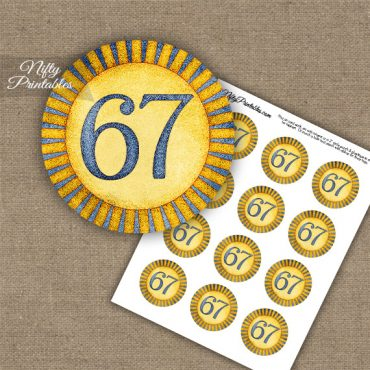 67th Birthday Cupcake Toppers - Sunshine Illustrated