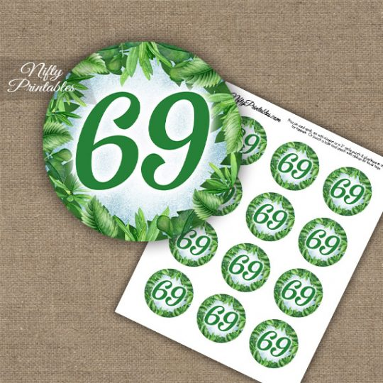 69th Birthday Cupcake Toppers - Greenery