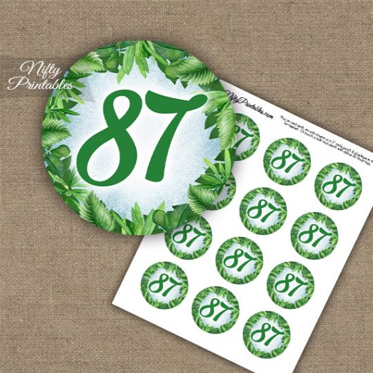 87th Birthday Cupcake Toppers - Greenery