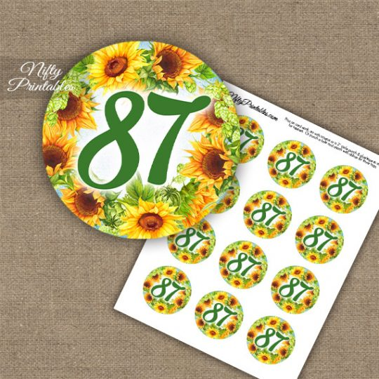 87th Birthday Cupcake Toppers - Sunflowers