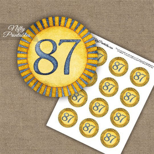 87th Birthday Cupcake Toppers - Sunshine Illustrated