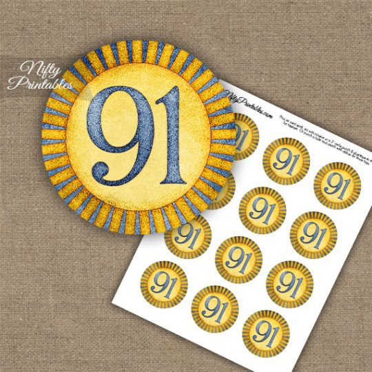 91st Birthday Cupcake Toppers - Sunshine Illustrated