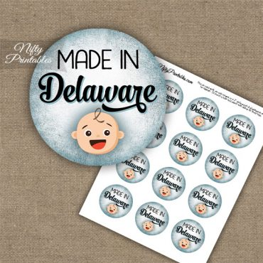 Delaware White Baby - Blue Cupcake Toppers