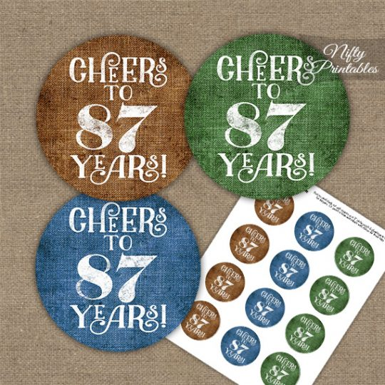 87th Birthday Cupcake Toppers - Linen Cheers To Years