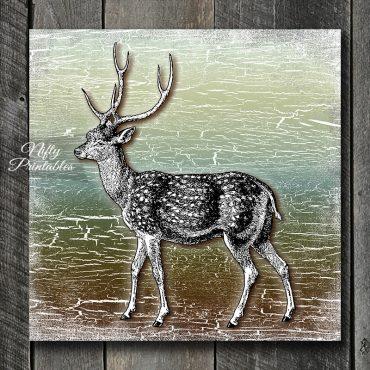 Deer Of Old Art Print