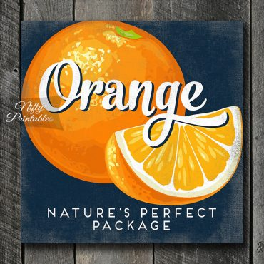 Vintage Orange Art Print - Retro Fruit