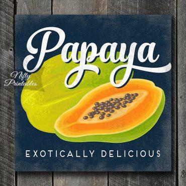 Vintage Papaya Art Print - Retro Fruit