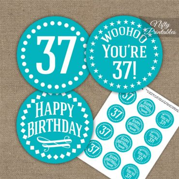 37th Birthday Cupcake Toppers - Turquoise White Impact