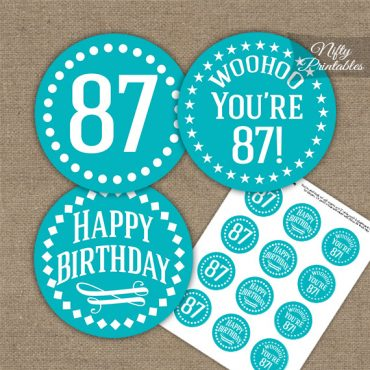 87th Birthday Cupcake Toppers - Turquoise White Impact