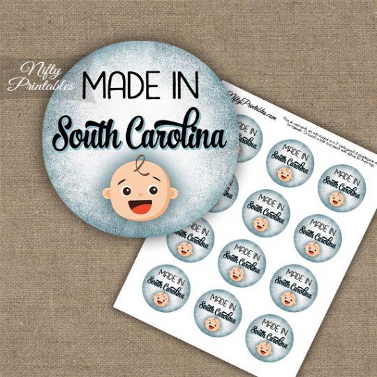 South Carolina White Baby - Blue Cupcake Toppers