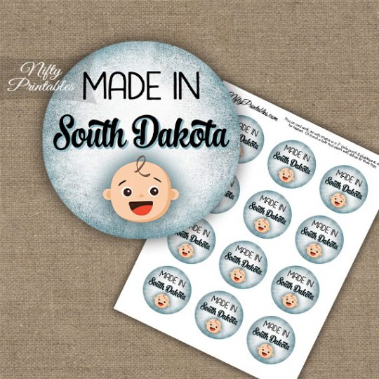 South Dakota White Baby - Blue Cupcake Toppers